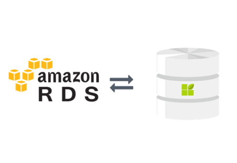 Amazon RDS (AWS) to datapine connection