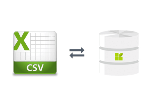 CSV connection to datapine