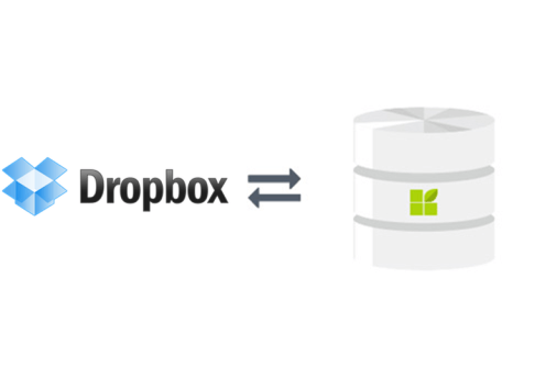 Dropbox connection to datapine