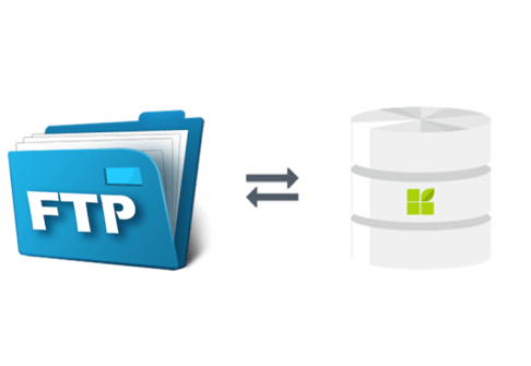 FTP Server connection to datapine