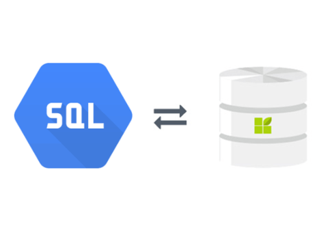 Google Cloud SQL to datapine connection