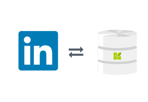 LinkedIn connection to datapine