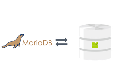 Maria DB connection to datapine