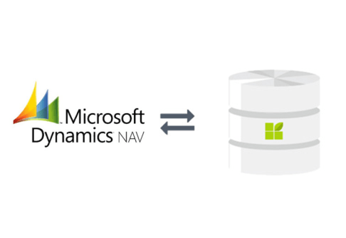 mircosoft dynamic NAV to datapine connection