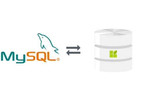 MySQL connection to datapine
