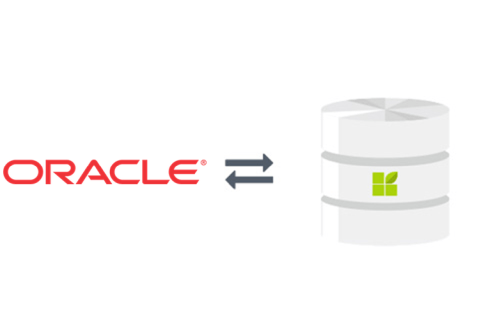 Oracle to datapine connection