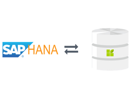 SAP Hana zu datapine connection